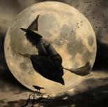 bruxa na vassoura 3