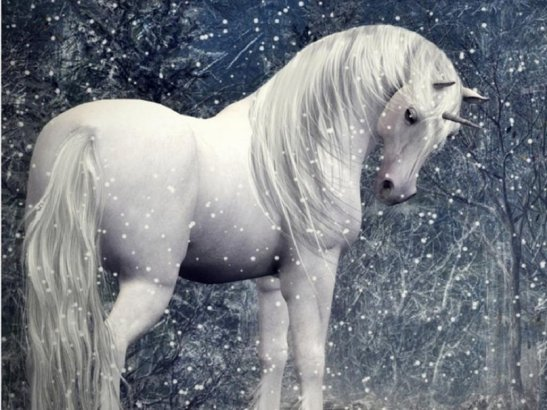 217445__mystical-unicorn-in-the-snow_p
