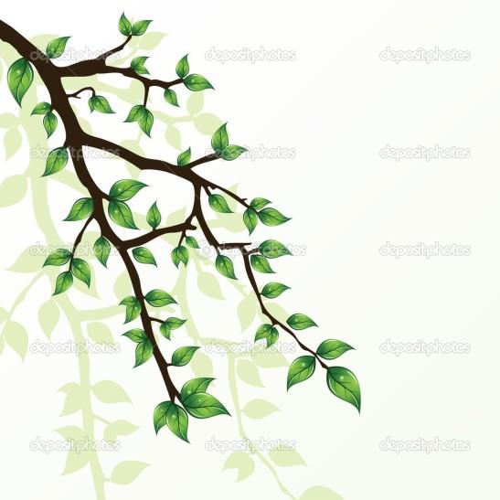 depositphotos_2944869-Branch-of-tree