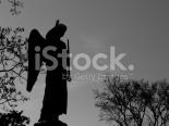 Imagem - Entrecontos