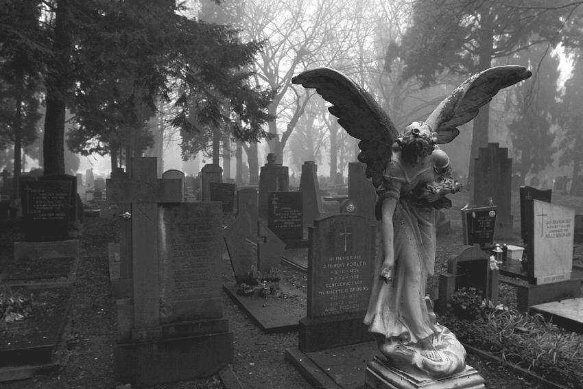 Resultado de imagem para gotico cemiterio